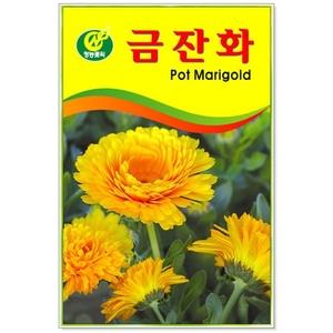 꽃씨 금잔화 20립 (5개이상 주문)