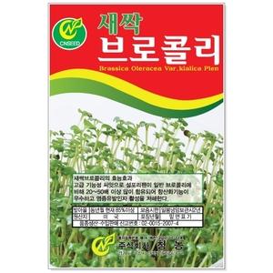 새싹브로콜리 30g 새싹씨앗